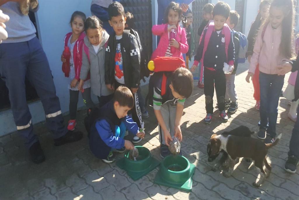 Süleymanpaşa Belediyesi Geçici Hayvan Bakımevi anaokulu öğrencilerinin akınına uğradı