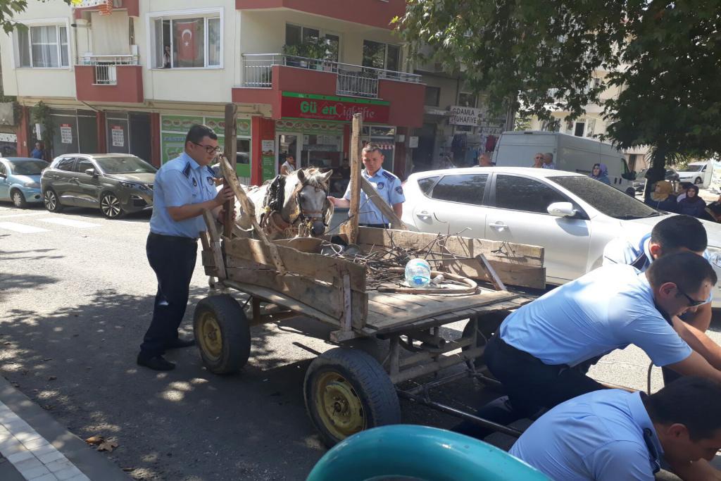 Trafiği tehlikeye sokan at arabaları toplanıyor