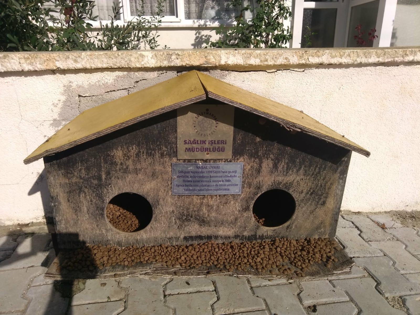 Süleymanpaşa'da sokak hayvanları yalnız değil