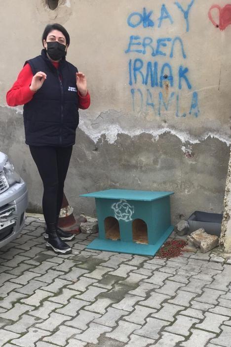 Sokaktaki canlar Süleymanpaşa Belediyesine emanet