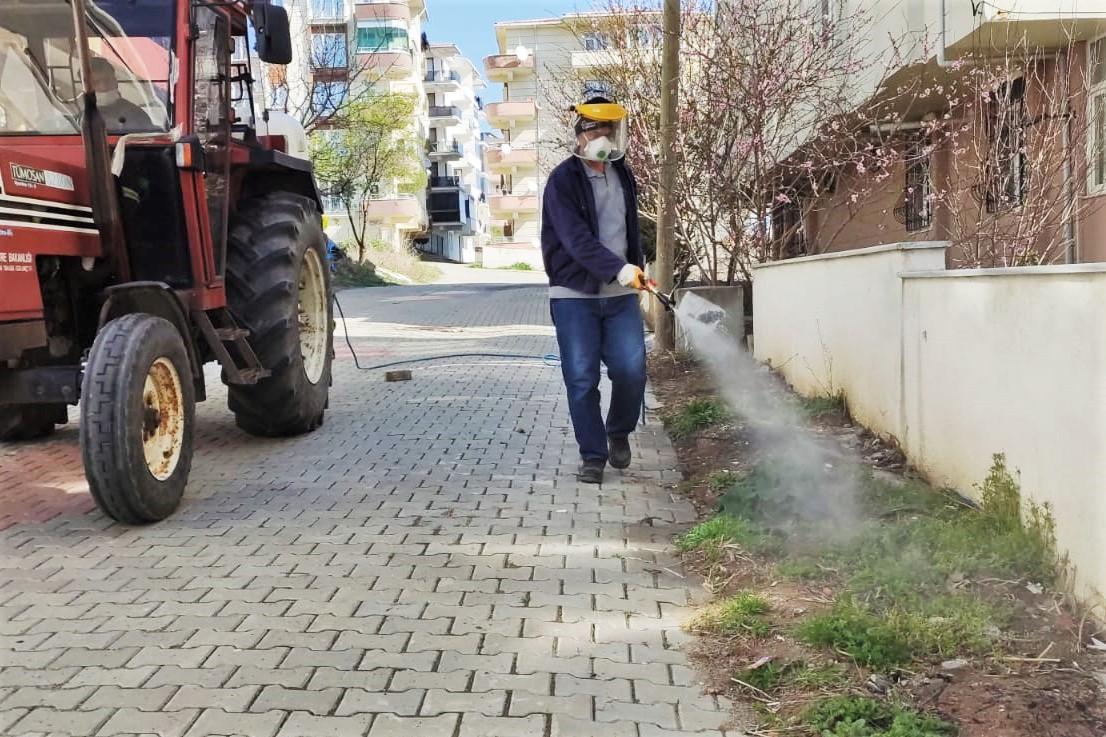 Süleymanpaşa Belediyesi yabani otla mücadele çalışmalarına hız verdi